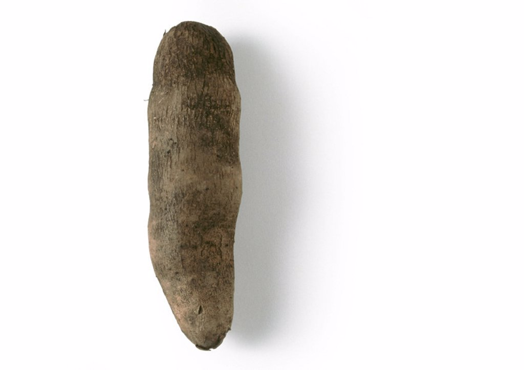 Stock Photo: 1569R-89007 Yam, full length