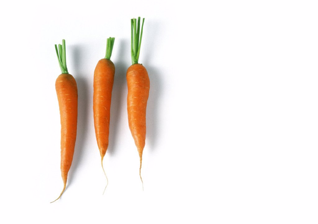 Stock Photo: 1569R-89083 Three carrots, full length