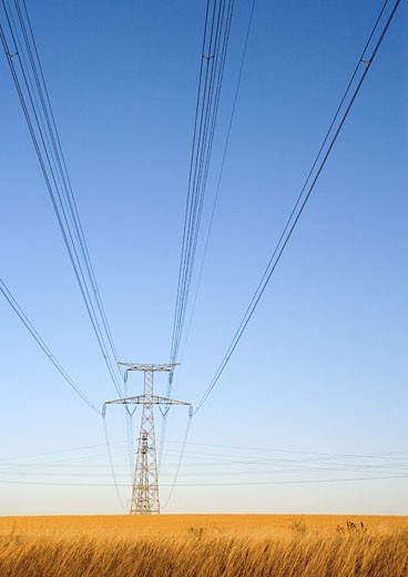 Stock Photo: 1569R-9016621 Electric pylon, low angle view