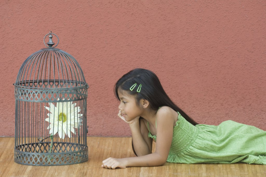 Girl lying on floor, looking at flower in birdcage, side view : Stock Photo