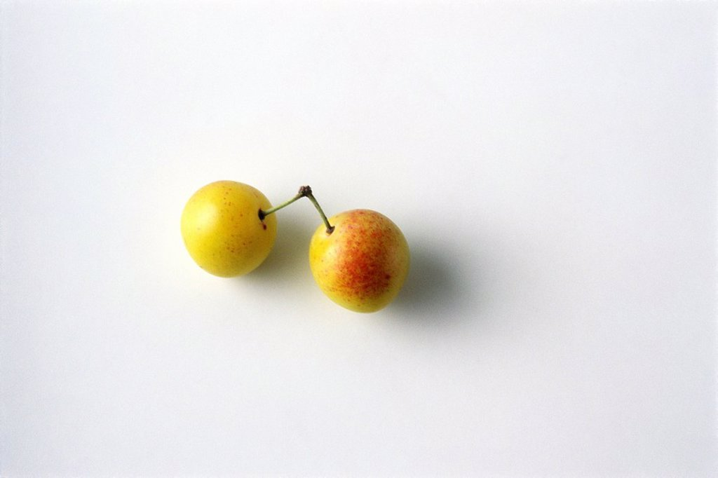 Two mirabelle plums, white background : Stock Photo