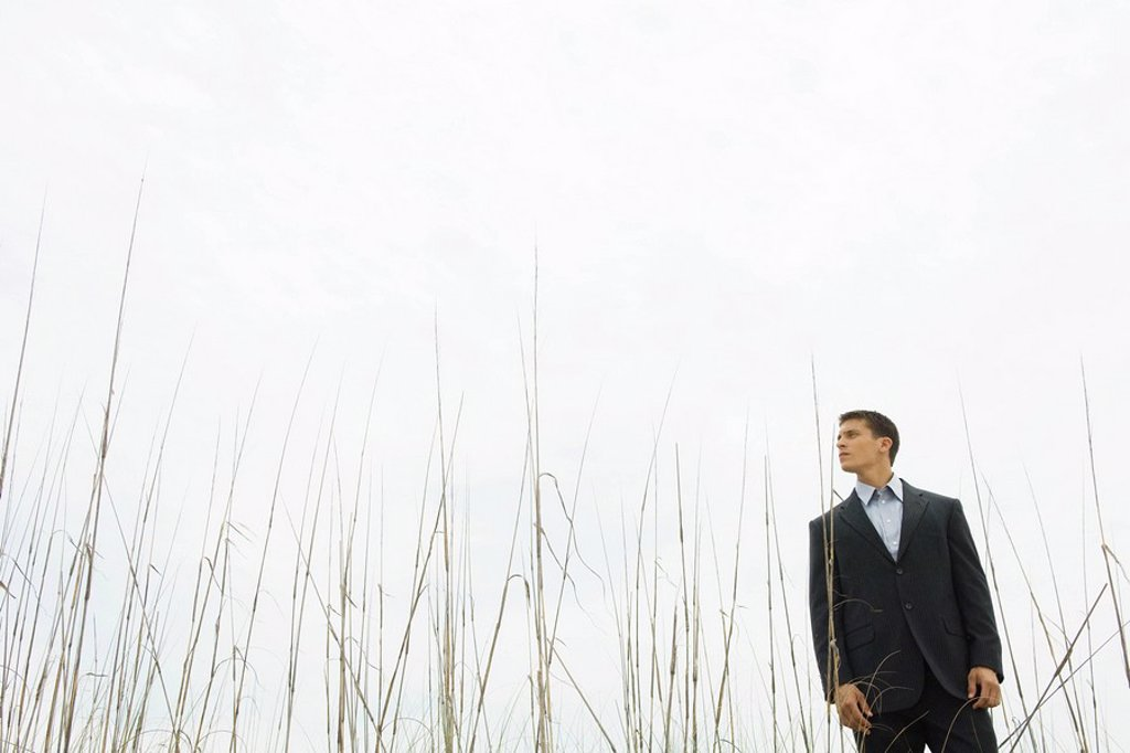 Businessman standing in tall grass, looking away : Stock Photo