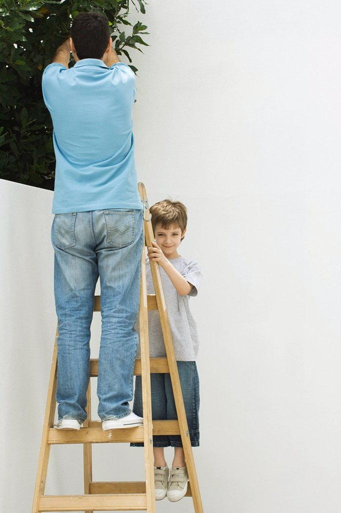 Father and son standing on ladder together, boy smiling at camera : Stock Photo