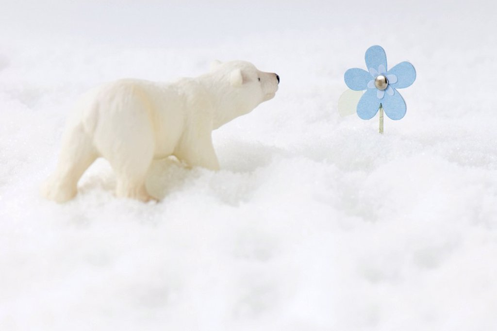 Toy polar bear in snow, looking at artificial flower : Stock Photo