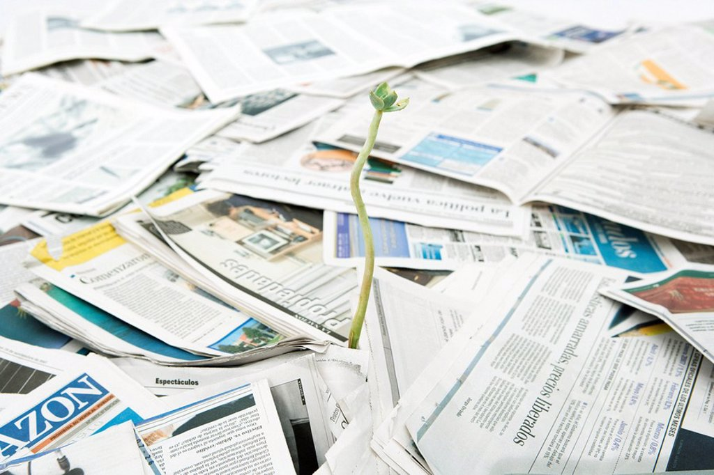 Stock Photo: 1569R-9036876 Plant seedling growing out of pile of newspapers
