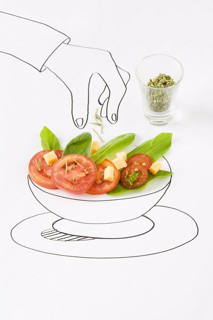 Stock Photo: 1569R-9038029 Drawing of hand sprinkling seasonings on salad