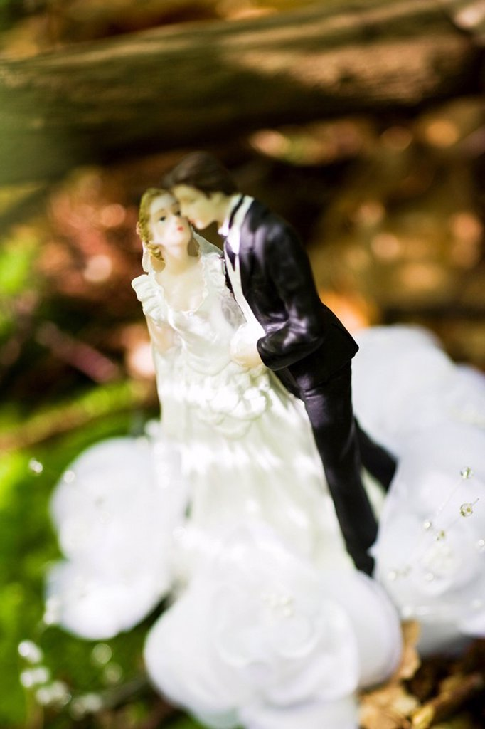 Bride and groom wedding cake figurine : Stock Photo