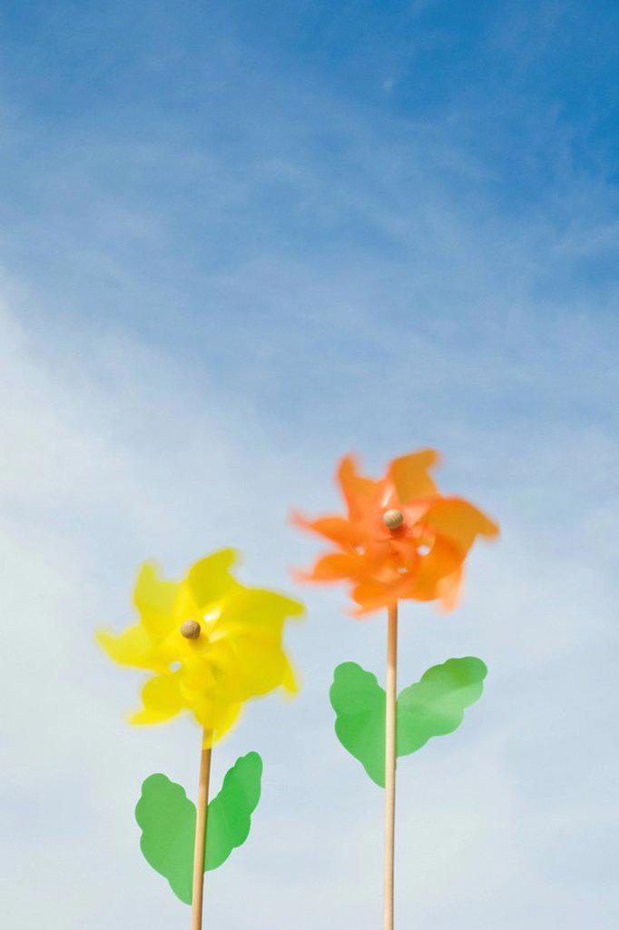 Pinwheels shaped like flowers : Stock Photo