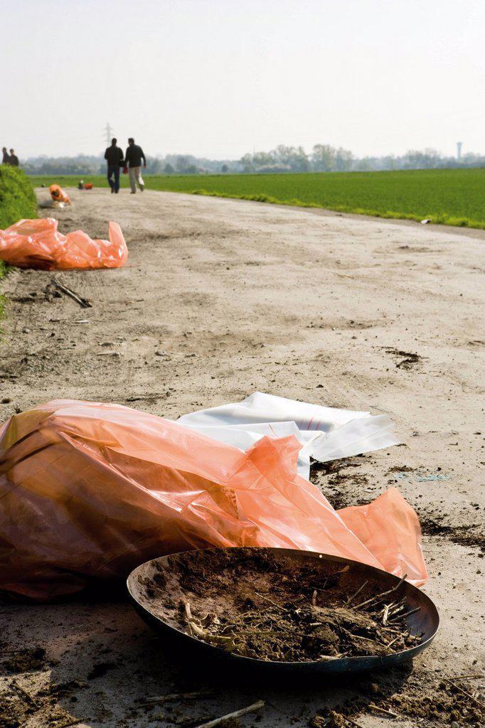 Roadside litter : Stock Photo