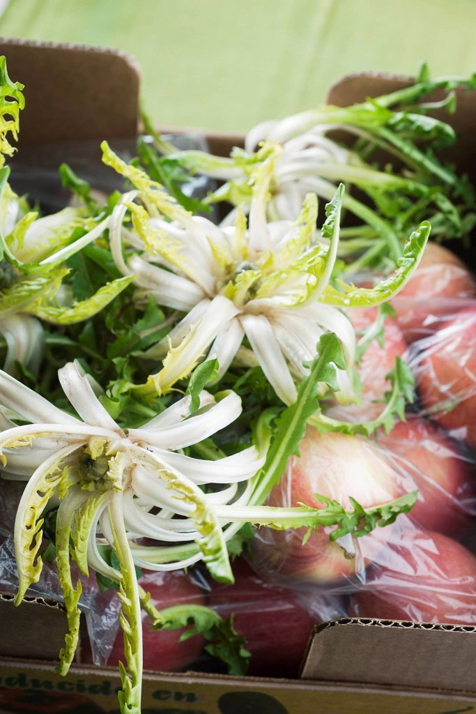 Endive heads and other fresh produce : Stock Photo