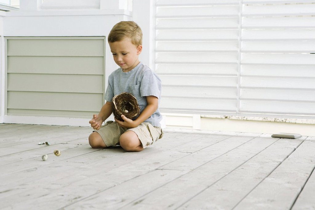 Boy kneeling on the ground, spilling eggs out of bird´s nest : Stock Photo