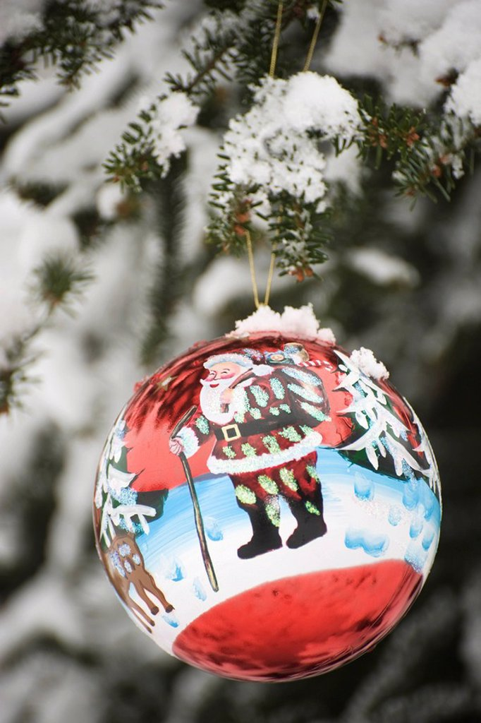 Colorful Christmas ornament hanging from snow frosted branch : Stock Photo