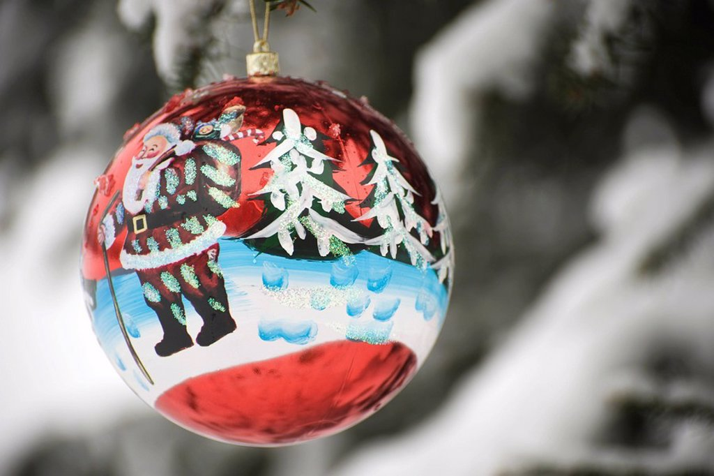 Colorful Christmas ornament hanging from branch : Stock Photo