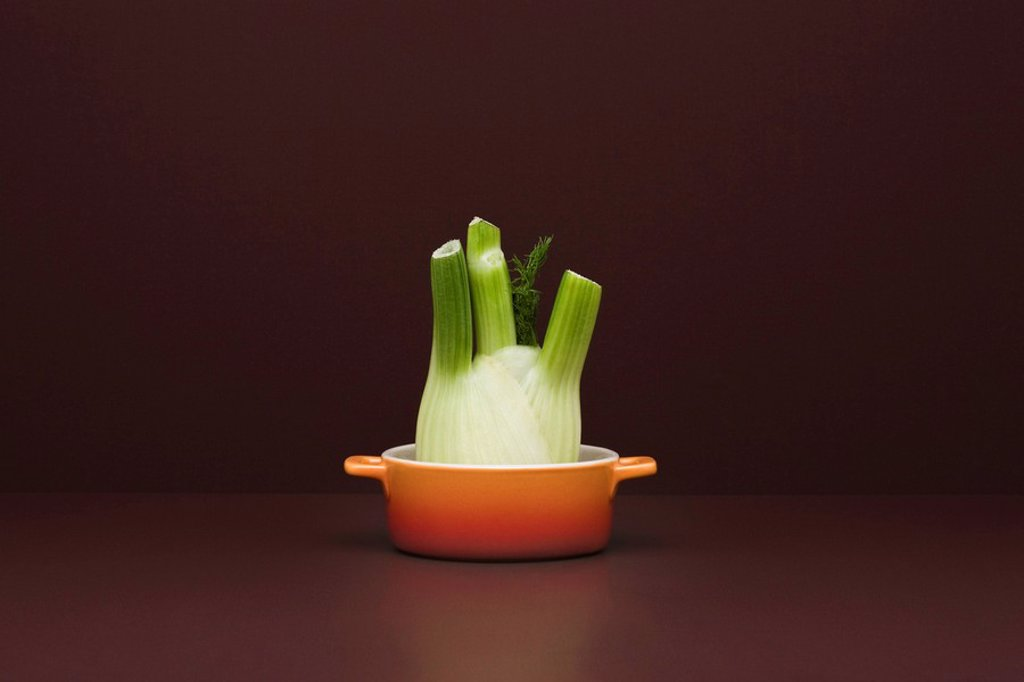 Stock Photo: 1569R-9067231 Food concept, fresh fennel in small pot