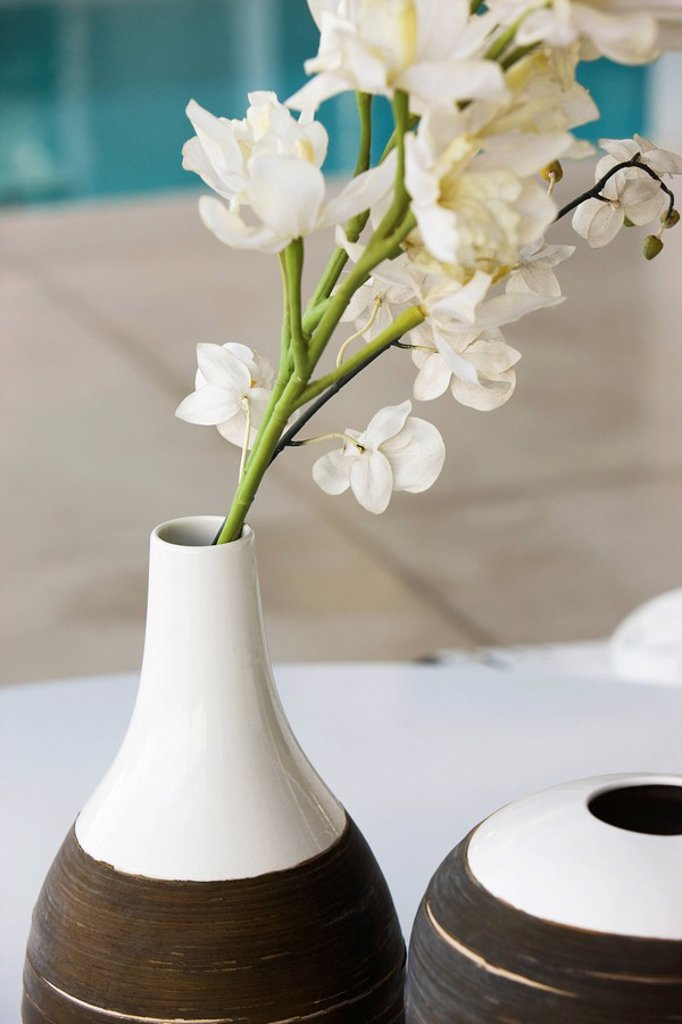 White flowers in ceramic vase : Stock Photo