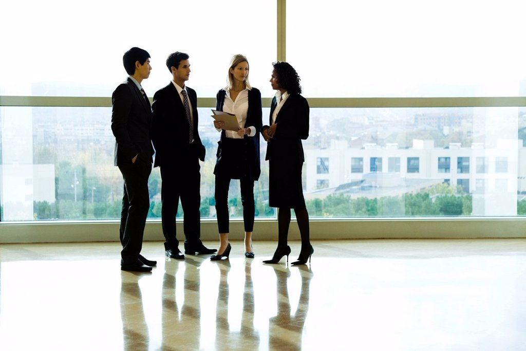 Business executives standing together talking : Stock Photo