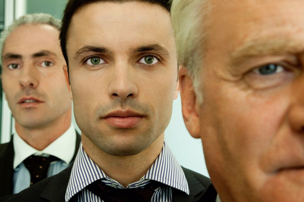 Male executives, portrait : Stock Photo