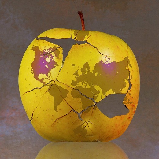 World map on fractured apple : Stock Photo