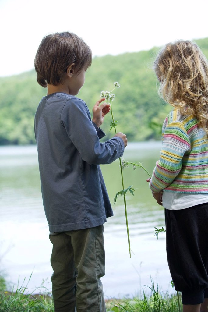Children looking at wildflowers by lake : Stock Photo