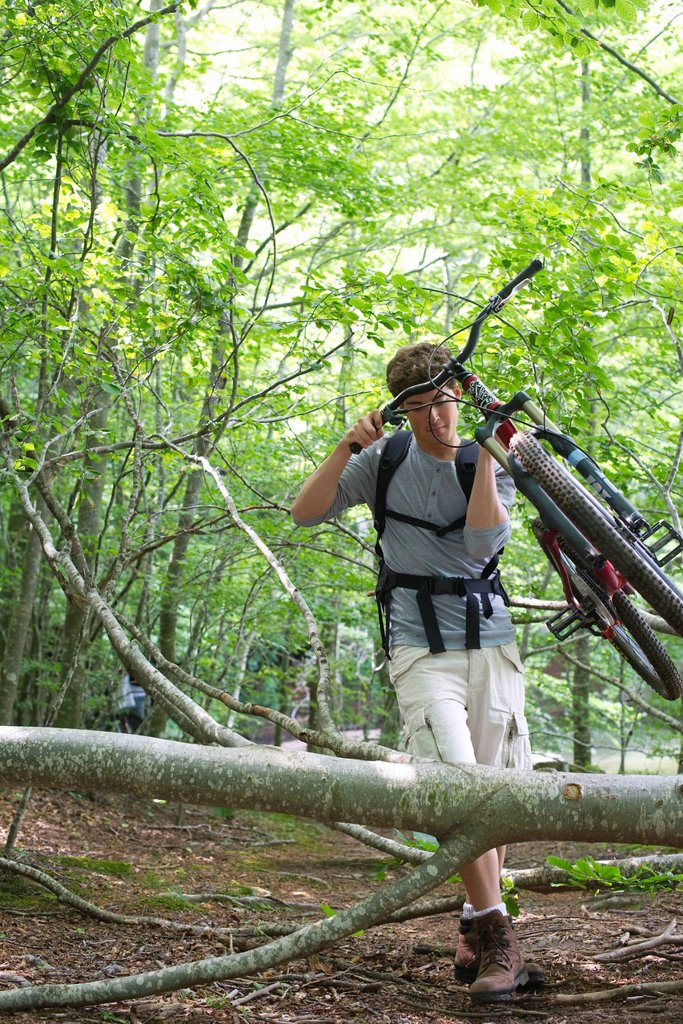 Man carrying mountain bike in woods with fallen tree trunks : Stock Photo