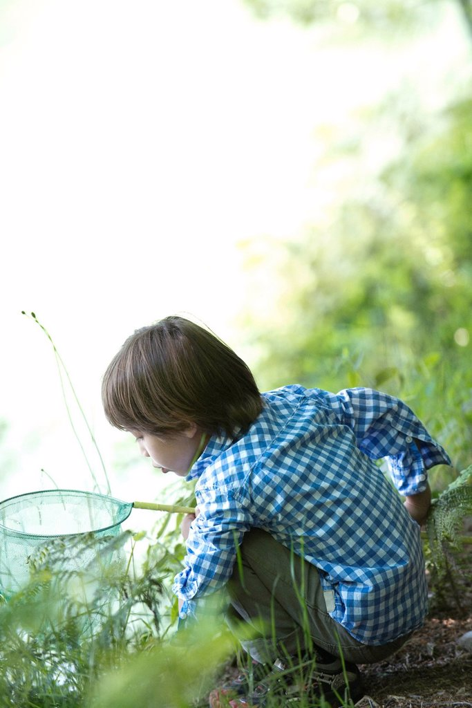 Boy catching tadpoles at water´s edge : Stock Photo