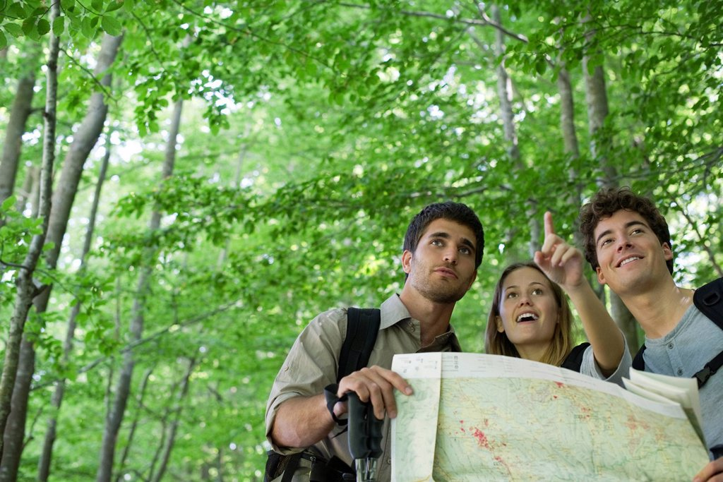 Stock Photo: 1569R-9072573 Hikers consulting map