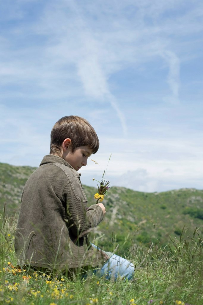 Stock Photo: 1569R-9072828 Boy kneeling on meadow with flowers in hand