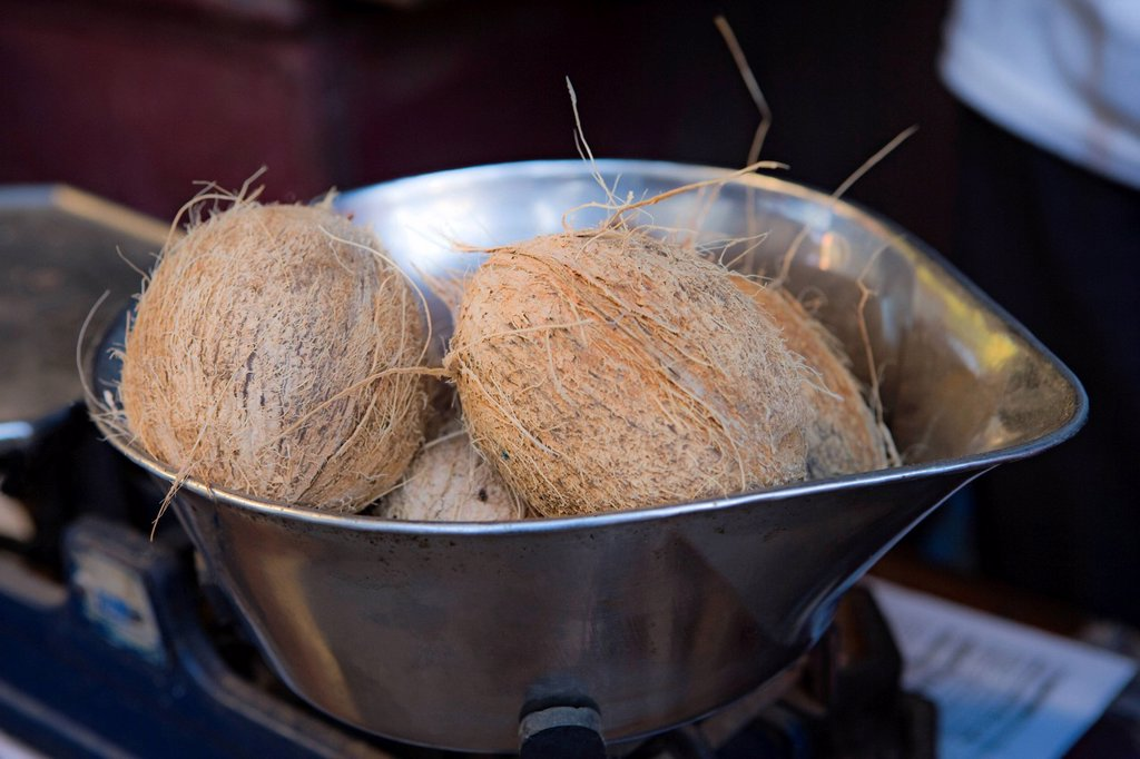 Stock Photo: 1569R-9073889 Coconuts in metal container