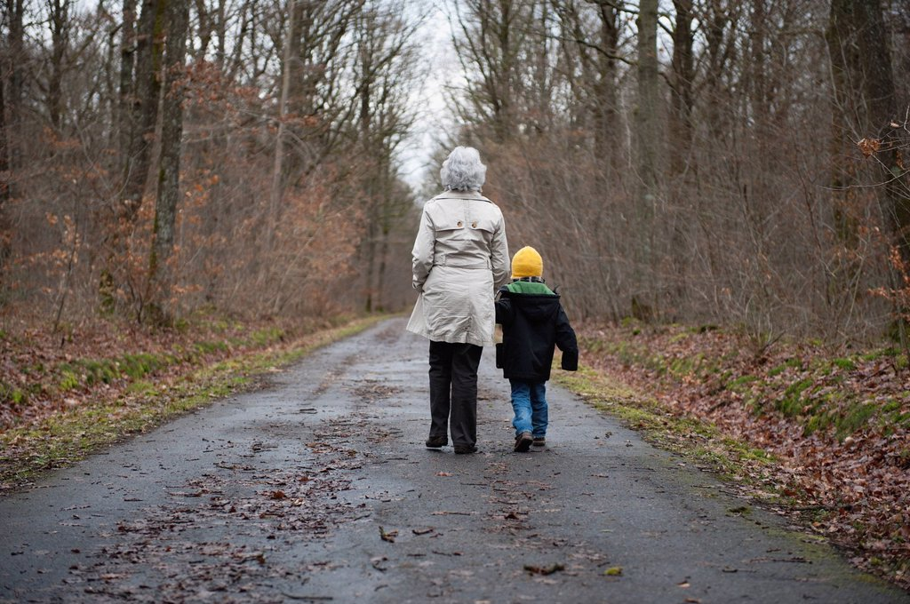Stock Photo: 1569R-9073994 Grandmother and grandson walking in woods, holding hands, rear view