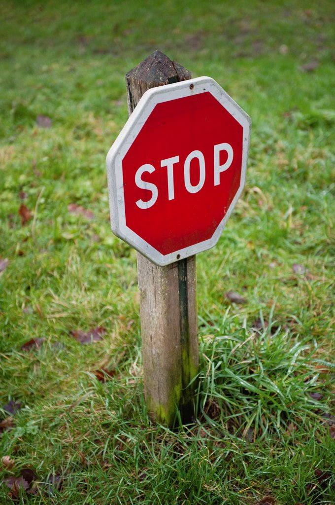Stop sign in grass : Stock Photo
