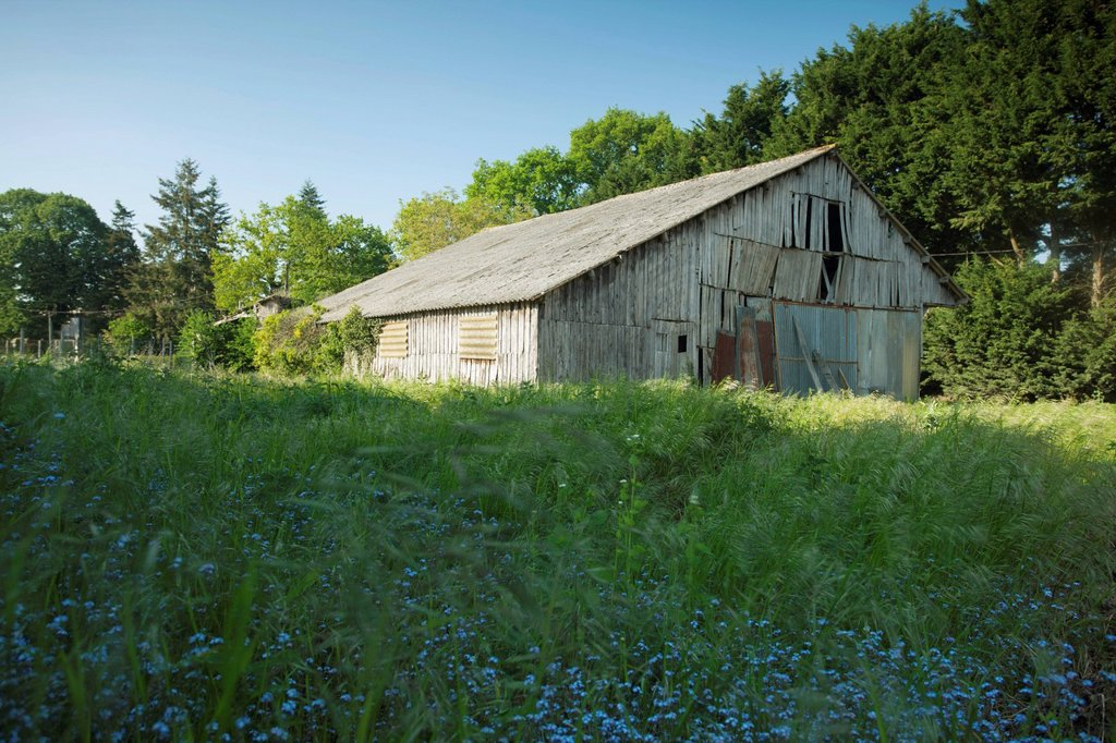Dilapidated barn : Stock Photo