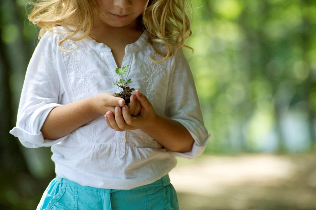 Girl holding seedling, cropped : Stock Photo
