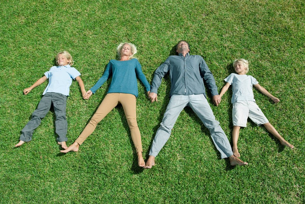 Stock Photo: 1569R-9076957 Family with two children lying side by side hand in hand on lawn, high angle view