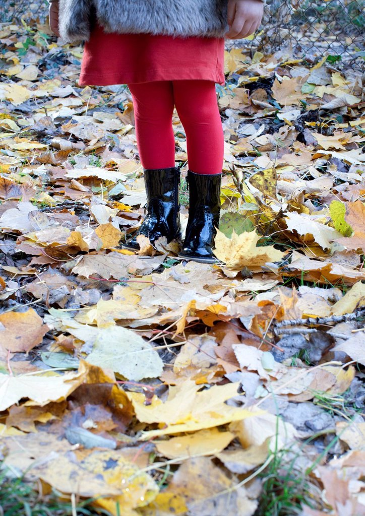 Stock Photo: 1569R-9077363 Girl standing on autumn leaves, low section