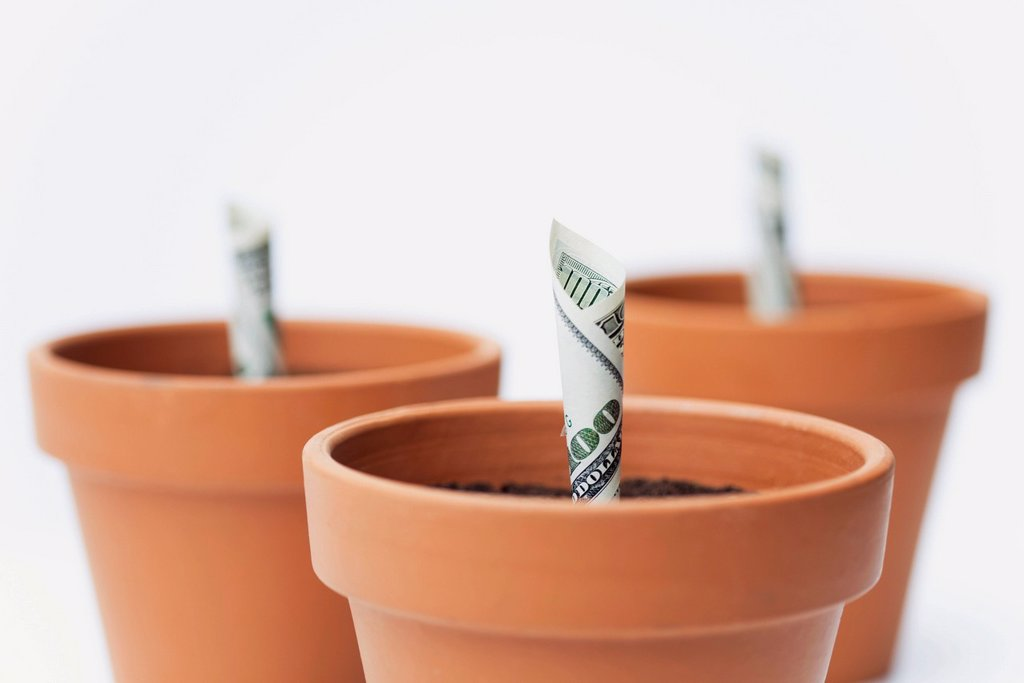 Stock Photo: 1569R-9077423 One_hundred dollar bills planted in flower pots