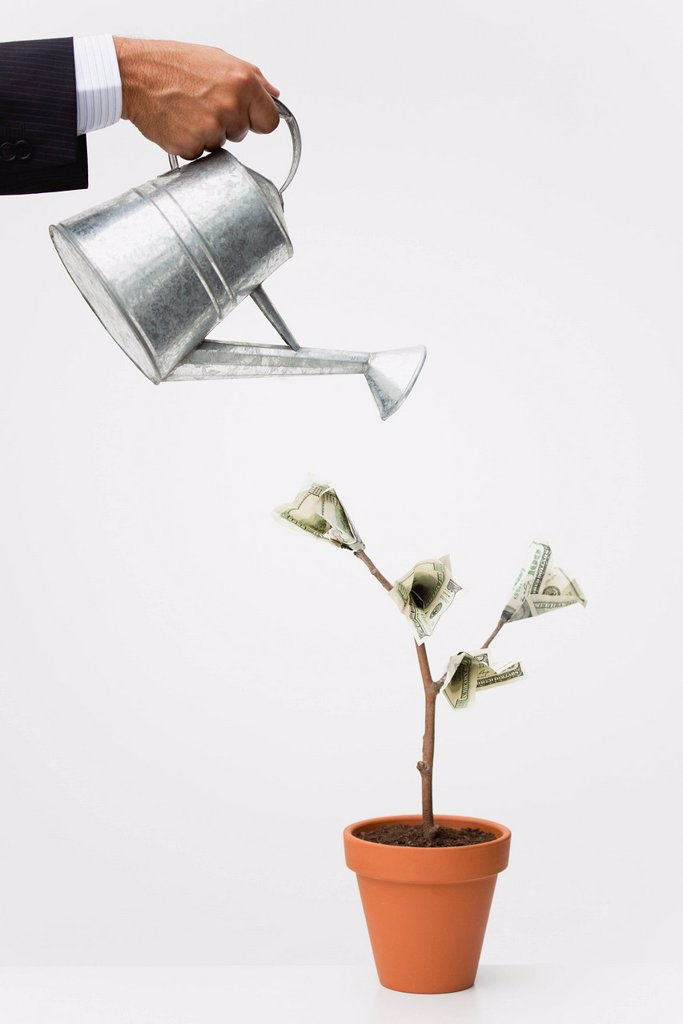 Stock Photo: 1569R-9077616 Businessman watering money tree, cropped