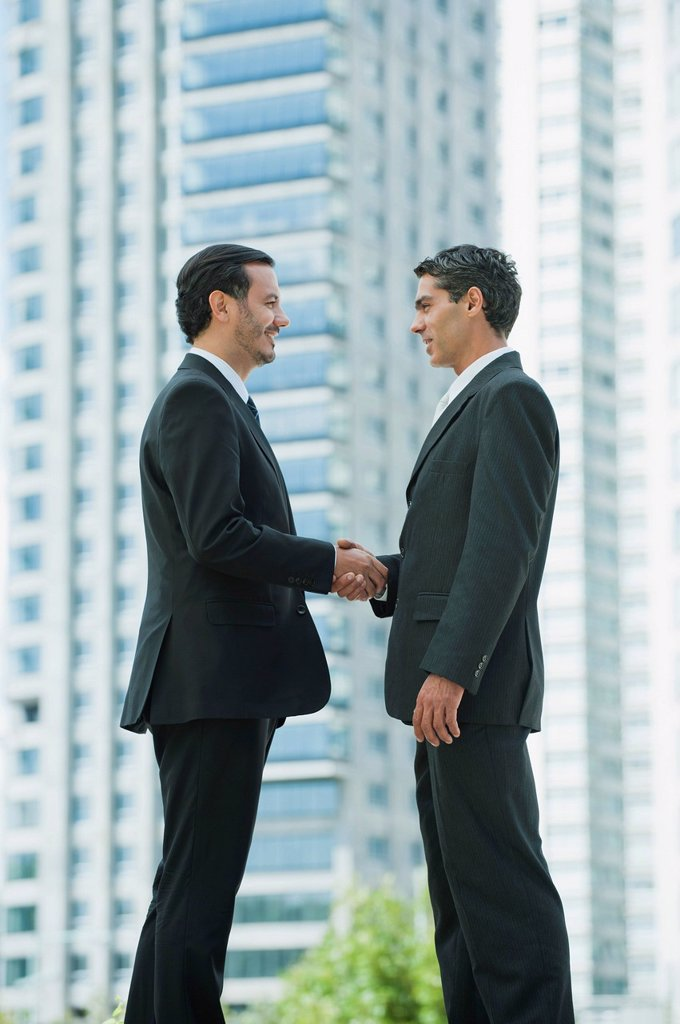 Business executives shaking hands : Stock Photo