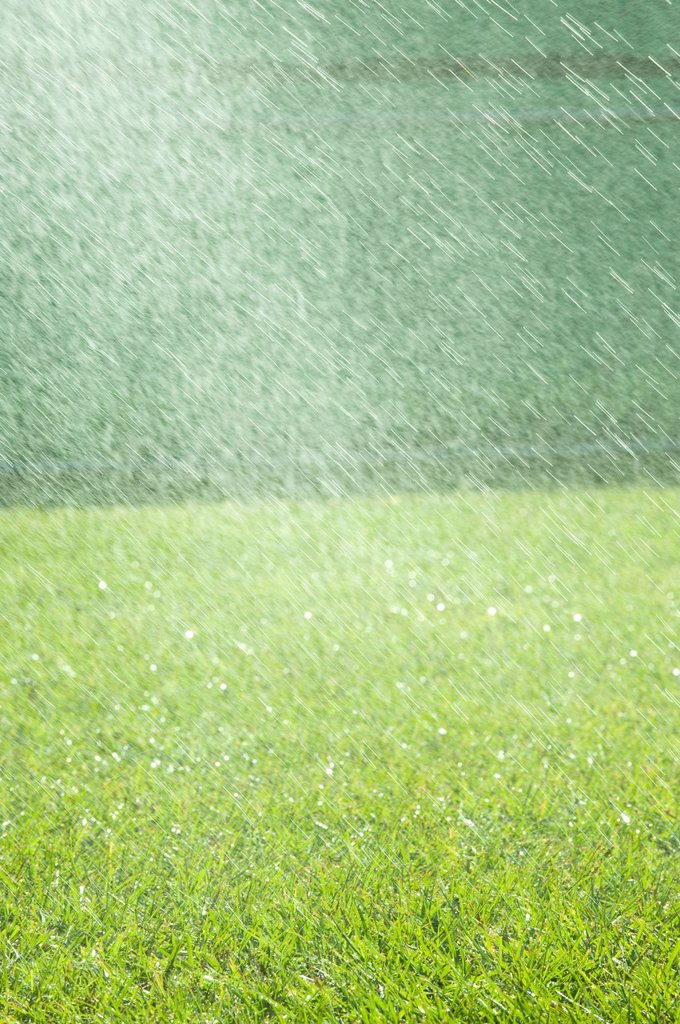 Rain falling on grass : Stock Photo