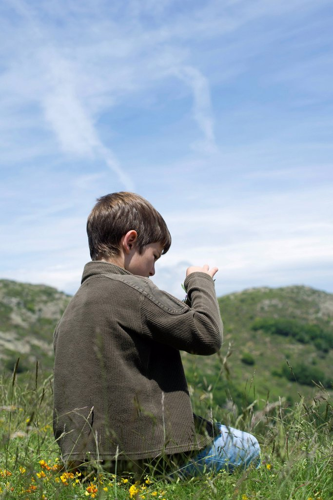 Stock Photo: 1569R-9080595 Boy sitting on grass, looking at wildflower, rear view