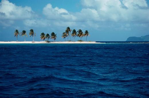 Sandy Island Grenadines : Stock Photo