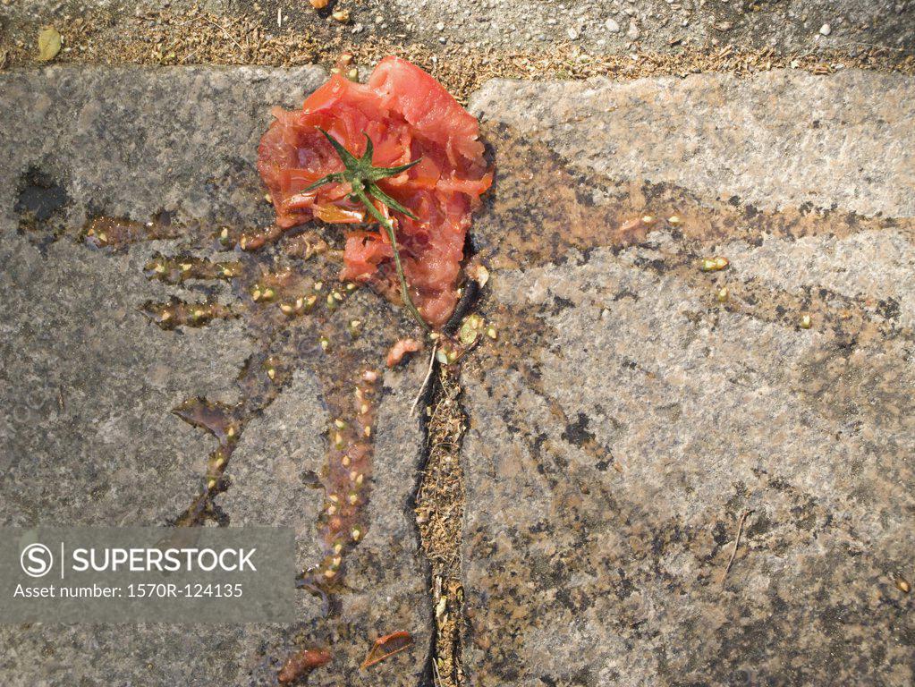 Stock Photo: 1570R-124135 A tomato splattered on a sidewalk