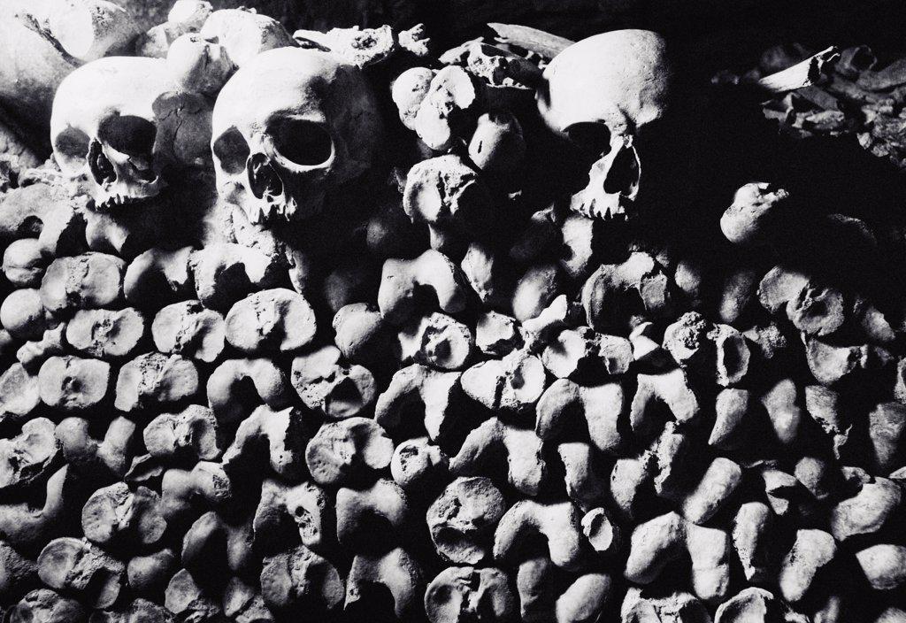 Three human skulls on a pile of bones, Les Catacombes, Paris, France : Stock Photo