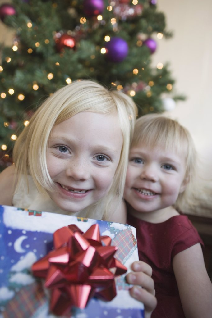Stock Photo: 1570R-102654 Two young girls holding present near Christmas tree