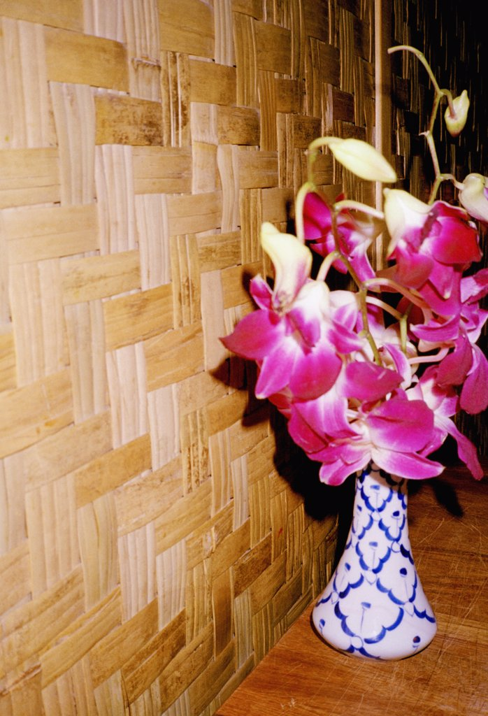 Stock Photo: 1570R-11020 vase of pink flowers next to a wooden wall