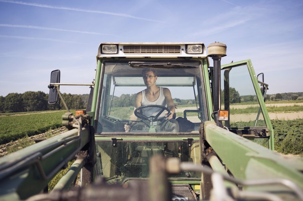 Farmer driving tractor in field : Stock Photo