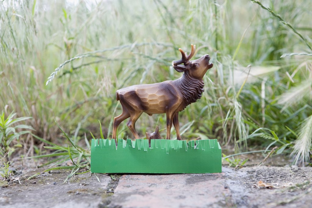 A plastic deer figurine on a garden path : Stock Photo