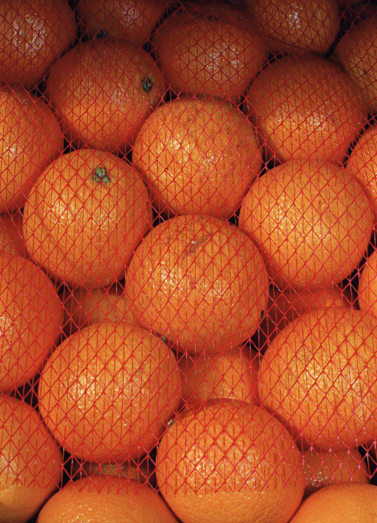 Stock Photo: 1570R-120612 Pile of oranges under netting