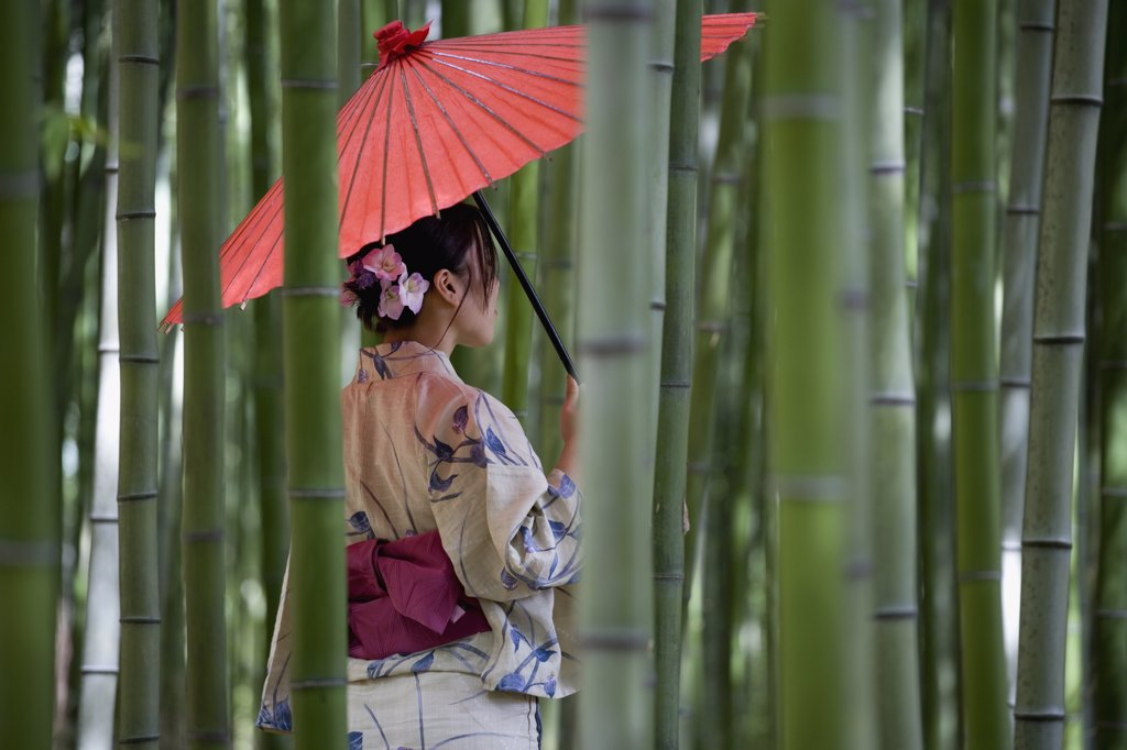 Stock Photo: 1570R-122229 A woman wearing a kimono and standing in a bamboo grove