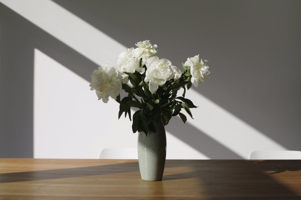 A vase of white peonies (Paeonia lactiflora) on a conference table : Stock Photo