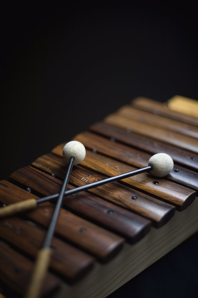 Stock Photo: 1570R-128312 A xylophone